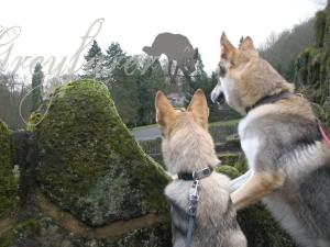 Sevilen and Rosco at Bergpark Wilhelmshöhe.